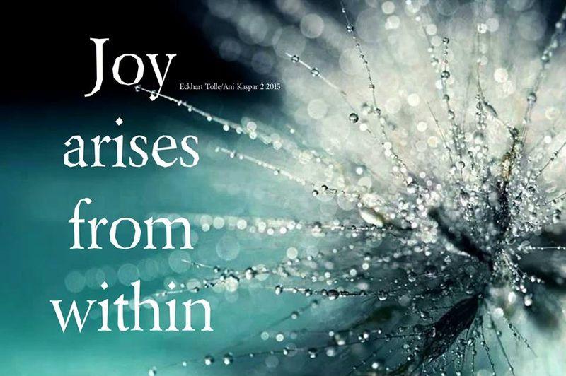 Joy arises from within
